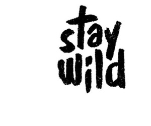 wild, quote, and stay wild image