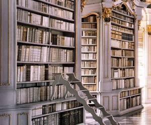 biblioteca, livros, and book image
