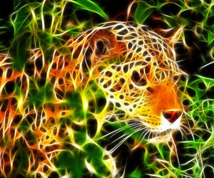fractals and tiger image