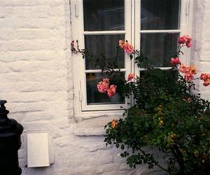 vintage, flowers, and window image