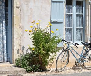 bike, blog, and bretagne image