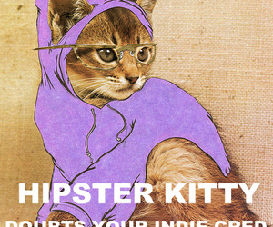 hipster, indie, and kitty image