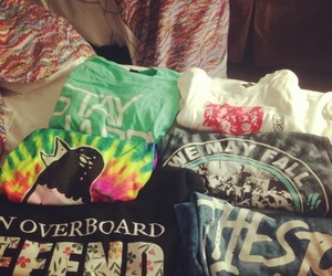 issues, the wonder years, and warped tour image
