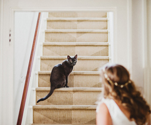 cat, vintage, and girl image