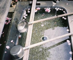 petals and water image