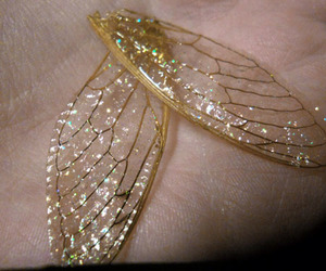wings, fairy, and gold image