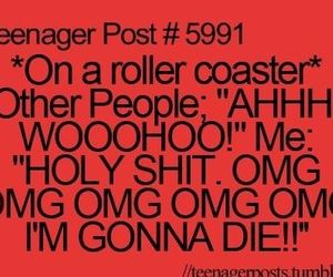 funny, lol, and rollercoaster image