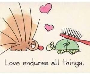 love, turtle, and cartoon image