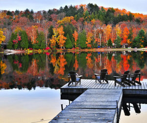autumn, lake, and fall image