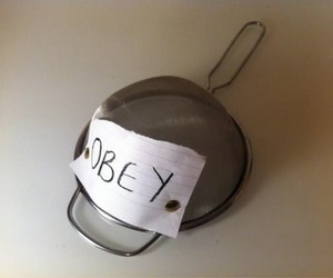 obey, cool, and hat image