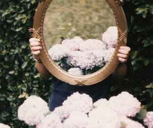 flowers, mirror, and photography image