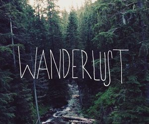 wanderlust, forest, and travel image