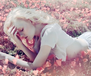 beauty, fantasy, and field image