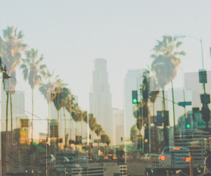 city, summer, and palms image