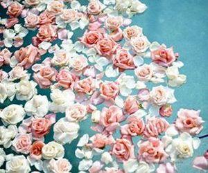 beautiful, pink, and soft image