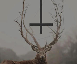 deer, hipster, and cross image