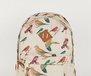 bag, bird, and backpack image