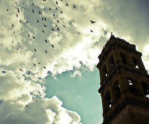 mexico, jalisco, and photography image
