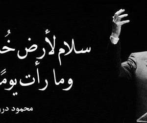 arabic, عربي, and محمود درويش image