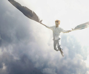 boy, fly, and angel image