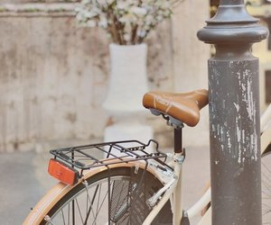 bike, vintage, and flowers image