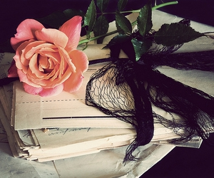 rose, letters, and flowers image