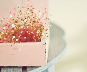 flowers, pink, and box image