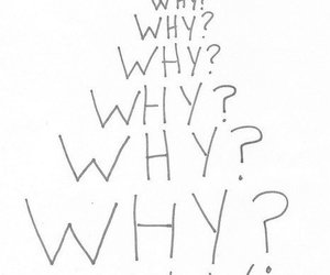 why, quote, and why? image