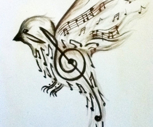 music, bird, and art image