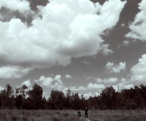 b&w, forest, and sky image