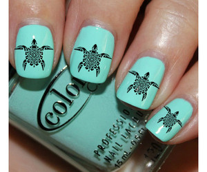 nails, turtle, and beauty image