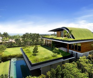 house, green, and home image