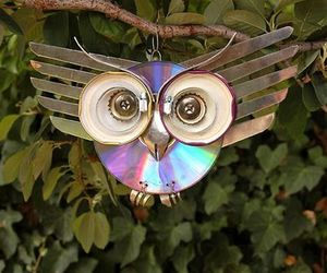 owl and recycle image