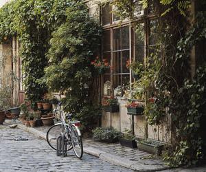 bike, bicycle, and street image