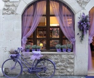 purple, bicycle, and bike image