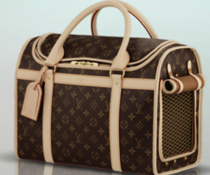 dog, Louis Vuitton, and carrier image