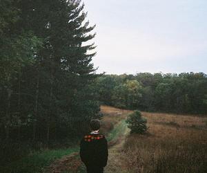 alone, woods, and boy image