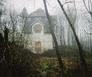 house and forest image