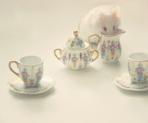 mouse, hamster, and cute image