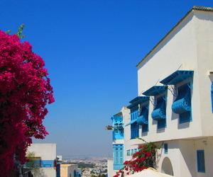 blue, tunisia, and tunis image