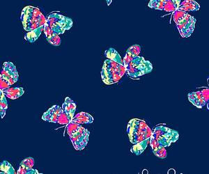 butterflies, colors, and wallpaper image