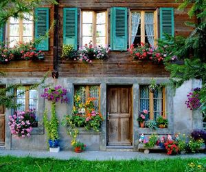 home house flower image