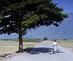 asian, bike, and landscape image