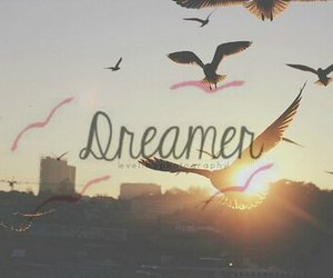 Dream, dreamer, and bird image