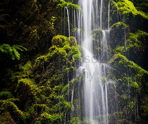 green, waterfalls, and landscape image