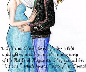 bill, harry potter, and victoire image