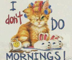 cat, morning, and cute image