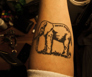 elephant, never forget, and tattoo image