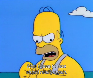 capture, homer, and homer simpson image