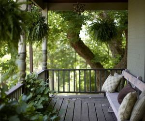 ferns and porch image